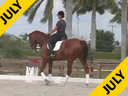 Kathy Connelly<br>Assisting<br>Michelle Gerlach<br>Udjang<br> by: Polanski<br>KWPN<br> 5 yrs. old Gelding<br>Training: 2nd Level<br>Duration: 38 minutes