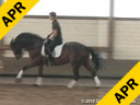 Leonie Bramall<br> Assisting<br> Martin Swoboda<br> Princess<br> Trakhner<br> 8 yrs. old Mare<br> Training: 2nd Level<br> Duration: 33 minutes