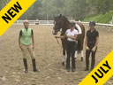 Mette Rosencrantz<br> Riding & Lecturing<br> Breaking Of The Young Horse<br> Wellington<br> 3 yrs. old Gelding<br> Hanoverian<br> Duration: 35 minutes