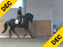 Markus Gribbe<br> Assisting<br> Tania Seymour<br> Ramoneur<br> Oldenburg<br> by: Rohdiamant<br> 7 yrs. old Stallion<br> Training: Grand Prix<br> Owner: Tanya Seymour<br> Duration: 15 minutes