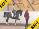 Ulla Salzgeber<br> Assisting<br> Maria Torres<br> Dimanche<br> Bavarian<br> by:<br> Davidion/Donnerhall<br> 5 yrs. old Gelding<br> Training: 2nd Level<br> Duration: 26 minutes