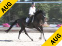 Jan Brons<br> Riding & Lecturing<br> Bel Canto<br> KWPN<br> by: Negro<br> 6 yrs. old Mare<br> Training: 2nd Level<br> Owner: Norwest Farm<br> Duration: 48 minutes