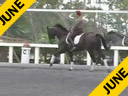 Betsy Steiner<br>Assisting<br>Tami Hoag<br>Coco Channel<br>Rheinlander Gelding<br>13 yrs. old<br>Training: Grand Prix<br> Duration: 36 minutes