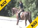 Ellen Bontje<br> Riding & Lecturing<br> Wensch DeJeu<br> KWPN<br>7 yrs old Mare<br> by:Jazzz<br> Owner: DeJeu Dressage<br> Duration: 29 minutes