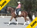 Shannon Dueck<br>Riding & Lecturing<br>S Infinity<br>8 yrs.old Westfallen<br>Owner: Cetty Weiss<br>Training:Intermediaire 1<br>Duration:41 minutes
