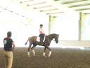 Cesar Parra<br> Assisting<br> Susan Collins<br> Spree<br> 8 yrs. Old<br> Training: 1st  Level<br> Duration: 29 minutes