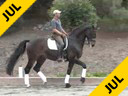USDF APPROVED University Accreditation Available on DVD No.34Steffen PetersRiding & LecturingRavelIn a Double BridleKWPN10 yrs.oldTraining:GP LevelOwner: Akiko YamazakiDuration: 43 minutes