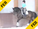 Arthur Kottas<br> Assisting<br> Gillian Wright<br> Italo<br> 8 yrs. old Gelding<br> Bavarian Warmblood<br> Training: 3rd Level<br> Owner: Fritz Baehre<br> Duration: 30 minutes