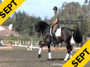 USDF APPROVED<br> University Accreditation<br>Available on DVD No.41<br> Steffen Peters<br> Riding & Lecturing<br> Ravel<br> KWPN<br> by:Contango<br> 12 yrs. old Gelding<br> Training: GP Level<br> Duration: 33 minutes