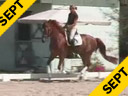 Shannon Dueck<br>Riding & Lecturing<br>Ringo Starr<br>Oldendburg<br>5 yrs. old Gelding<br>Training: 2nd Level<br>Duration: 35 minutes