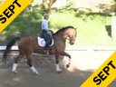 Mette Rosencrantz<br>Riding & Lecturing<br> Basquewille<br> Danish Warmblood<br> 14 yrs. old<br> Training: Grand Prix<br>Duration: 35 minutes