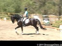 U.S. Trainers & Judges Young Horse Forum<br>Day 2<br> Dr.Dieter Schule<br> Demonstrating the Expectations<br> of the 5 yrs. old<br> Assisting<br> Sabine Schut-Kery<br> Sanceo<br> Hanoverian<br> by: San Remo<br> 5 yrs. old Stallion<br> Durati