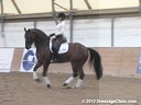 WDCTA Wisconsin Dressage & Combined Training Association<br>Day 1<br> PSG Intermediare I<br> Steffen Peters<br> & Janet Foy<br> Assisting<br> 9 yrs. old Hanoverian Gelding<br> 12 yrs. old Dutch Gelding<br> 10 yrs. old Holsteiner Gelding<br>