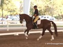 GDFNA Global Dressage Forum North America Udo Lange Riding 11 yrs. old Hanoverian by: De Niro Duration: 29 minutes