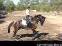 U.S. Trainers & Judges Young Horse Forum<br>Day 2<br> Dr. Dieter Schule<br> Demonstrating the Expectations<br> of the 5 yrs, old<br> Assisting<br> Jo Moran<br> RHR Smooth Jazz<br> Oldenburg<br> by: Samarant<br> 5 yrs. old Gelding<br> Owner: