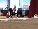 GDFNA Global Dressage Forum North America Ingrid Klimke Riding & Lecturing Dr. Wendell Hanoverian 5 yrs. Old Stallion Duration: 39 minutes