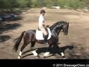 U.S. Trainers & Judges Young Horse Forum<br>Day 3<br> Dr. Dieter Schule &<br>      Susanne Lauda<br> Warm-Ups,test rides<br> Discussion of Scoring<br> Assisting<br> Sabine Schut-Kery<br> Sanceo<br> Hanoverian<br> 5 yrs. old Stallion<br>