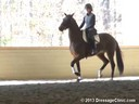 GDCTA Annual Symposium with<br> Scott Hassler<br> Assisting<br> Jessica Barnes<br> Ezabella HF<br> by:  Rousseau<br> Dutch Warmblood Mare<br> Owner: Julie Ballard Haralson<br> Duration: 29 minutes