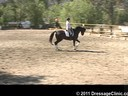 U.S. Trainers & Judges Young Horse Forum<br>Day 1<br> Dr. Dieter Schule<br> Assisting<br> Sabine Schut-Kery<br> Sanceo<br> by: San Remo<br> Hanoverian<br> 5 yrs. old Stallion<br> Duration: 12 minutes
