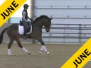 IDCTA Illinios Dressage & Combined Training Association<br> Lilo Fore<br> Assisting<br> Andi Patzwald<br> Bellini<br> Training:2nd Level<br> Duration: 40 minutes