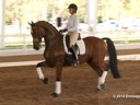 GDFNA Global Dressage Forum North America Tinne Vilhelmsson Riding & Lecturing Divertimento 12 yrs. old Training: GP Duration:15 minutes