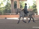CDS Junior Young Rider Clinic<br>