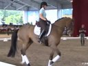 GDFNA Global Dressage Forum North America Steffen Peters Riding & Lecturing & Assisting Jamie Kment Zania 9 yrs. Old Mare Duration: 40 minutes