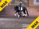 Day 2 Markus Gribbe Assisting Carmie Flaherty Foreman Hanoverian by: Fuerst Heinrich 6 yrs.  old Gelding Training: 1st Level Owner: Lana Andrews Duration: 34 minutes