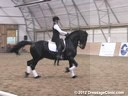 WDCTA Wisconsin Dressage & Combined Training Association<br>Day 1<br> Intermediare II & GP<br> Steffen Peters<br> & Janet Foy<br> Assisting<br> 12 yrs. old Friesian Gelding<br> 15 yrs. old Hanoverian Gelding<br> 10 yrs. old Oldenburg Ge