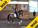 Day 3<br> Markus Gribbe<br> Assisting<br> Nicola Wallace<br> Duke of Clarence<br> Westphalian<br> German Riding Pony<br> by: Classic Dancer<br> 3 yrs. old Stallion<br> Training: Training Level<br> Duration : 23 minutes