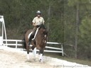 Pam Goodrich