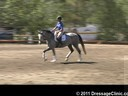 U.S. Trainers & Judges Young Horse Forum<br>Day 1<br> Dr. Dieter Schule<br> Assisting<br> Tamara Smith<br> Fleeceworks Cinco<br> Holsteiner<br> by: Cascani<br> 4 yrs. old<br> Owner: Judith McSwain<br> Duration: 25 minutes