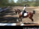 U.S. Trainers & Judges Young Horse Forum<br>Day 2<br> Dr. Dieter Schule &<br> Gerhard Politz<br> Assisting<br> Jo Moran<br> Walking on Sunshine<br> Hanoverian<br> by: Worldly<br> 8 yrs. old Mare<br> Owner: Robin Shearer<br> Duration: 45