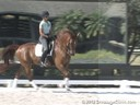 J.J. Tate<br>Riding & Lecturing<br>Remi Martin G<br>by: Relevant<br>Oldenburg<br>10 yrs. old Gelding<br>Training: 4th Level<br>Owner: Sofie Ghedin<br>Duration: 49 minutes