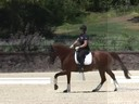 Gary Rockwell<br> Assisting<br> Susan Herster<br> Dario<br> 12 yrs. Old Gelding<br> Training:  3rd  Level Schooling 4th Level<br> Owner:  Susan Herster<br> Duration: 48 minutes