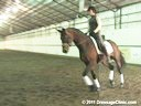 U.S.Trainers & Judges Young Horse Forum<br>Part 3<br>