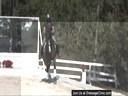 Pam Goodrich Riding & Lecturing Wyvern KWPN by: Olympic Ferro/Rhodium 8 yrs. old Gelding Training: 4th Level Owner: Eon J. Jin Duration: 39 minutes