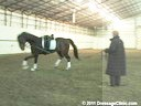 U.S. Trainers & Judges Young Horse Forum<br>A Lunging & Training<br>