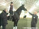 U.S.Trainers & Judges Young Horse Forum<br>Part 1<br>