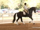 GDFNA Global Dressage Forum North America Tinne Vilhelmsson Riding & Lecturing Benetton Dream FRH 10 yrs. old Stallion Duration: 21 minutes