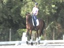 Shannon Dueck Riding & Lecturing Zorro KWPN 8 yrs. old Gelding Training: 4th Level Owner: Jean klaucke Duration: 40 minutes