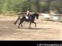 U.S. Trainers & Judges Young Horse Forum<br>Day 1<br> Dr. Dieter Schule<br> Assisting<br> Jo Moran<br> RHR Smooth Jazz<br> by: Samarant<br> Oldenburg<br> 5 yrs. old Gelding<br> Owner: Jo &  Nacho Moran<br> Duration: 24 minutes