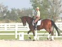 Volker Brommann