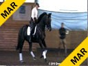 Day 3<br> Markus Gribbe<br> Assisting<br> Rebecca Garrard<br> Conbrio<br> KWPN<br> by: Contango<br> 10 yrs. old Gelding<br> Training: 4th/PSG Level<br> Owner: Caroline Williams<br> Duration: 42 minutes