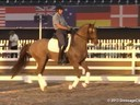 GDFNA Global Dressage Forum North AmericaSteffen PetersAssistingMarcus OrlovRidingE.T. VoilaHanoverian8 yrs. Old GeldingDuration: 42 minutes