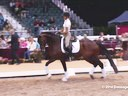 GDFNA Global Dressage Forum North America Christoph Hess Assisting Mary Bahniuk Lauritsen Riding 10 yrs. old Duration: 24 minutes