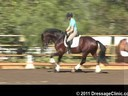 U.S. Trainers & Judges Young Horse Forum<br>Day 2<br> Dr. Dieter Schule<br> Demonstrating the Expectations<br> of the 3 yrs. old<br> Assisting<br> Sabine Schut-Kery<br> Rohan<br> Westfalen<br> by: Rock Forever<br> 3 yrs. old Stallion<br> Dur