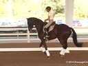 GDFNA Global Dressage Forum North America Christilot Boylen Riding & Lecturing Florencia 7 yrs. old Mare Duration: 36 minutes
