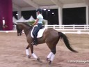 GDFNA Global Dressage Forum North America Christoph Hess Assisting Laura Loyes Galveston Danish Duration: 20 minutes