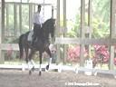 Cesar Parra<br> Riding & Lecturing<br> Cinnco Demayo<br> Owner: Royanne Winnett)<br> Holsteiner Gelding<br> 8 yrs. old<br> Training Grand Prix<br> Duration: 35 minutes
